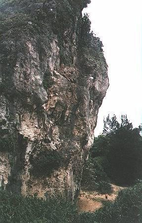 Rock Climbing Photo: From Ron's climbing page