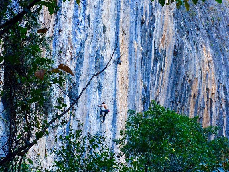 Rock Climbing Photo: Zach Nadiak high up on Culo de Negra. Such a beaut...