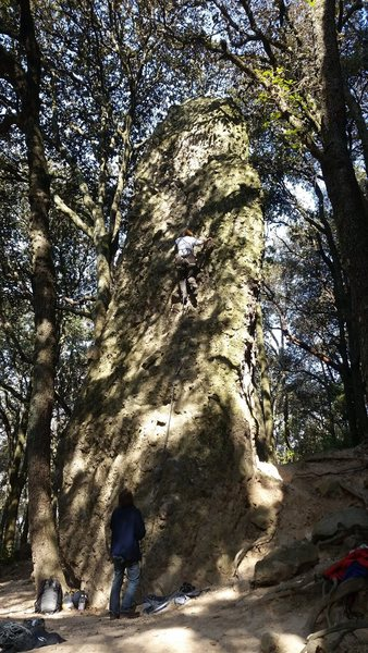 Rock Climbing Photo: A small pinnacle within yards of the Jilotepec par...