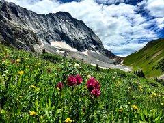 Rock Climbing Photo: Summer near Capitol Peak.