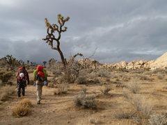Rock Climbing Photo: Hiking back from Eastern Siberia, beautiful desert...