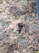 Rock Climbing Photo: The bolt on The Tube.