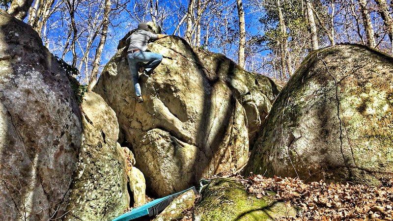 Rock Climbing Photo: Topout of Oakleaf Hydrangea