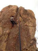Rock Climbing Photo: Rick on the crux move, Cats Claws. 5.11a.