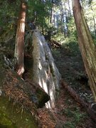 The Arête, TR anchors can be accessed by scrambling to the left. Watch for poison oak!