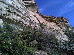 Rock Climbing Photo: 5