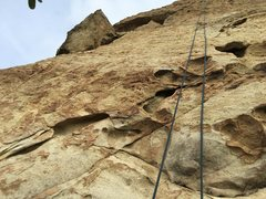 Rock Climbing Photo: Looking up toward the left of the face