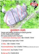 Rock Climbing Photo: photo of all golden slab