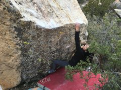 Rock Climbing Photo: Erika McBee on the f.a.