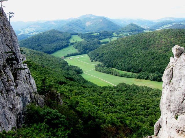 View from the middle of the Vegetarierwand