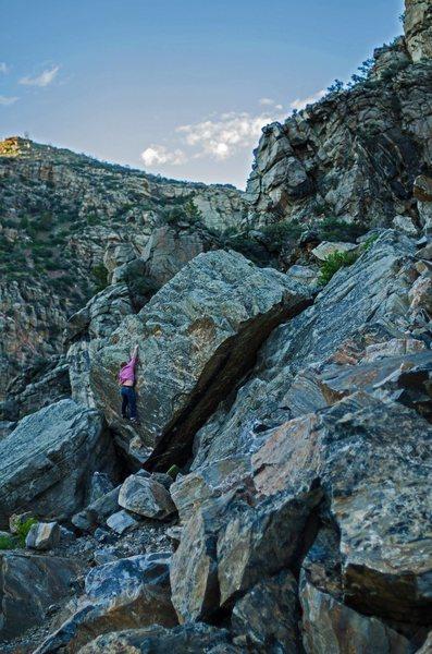 Rock Climbing Photo: P.Haun on FA of the Center Line  Photo by: M. Abbo...