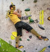 Rock Climbing Photo: Rock Wasp