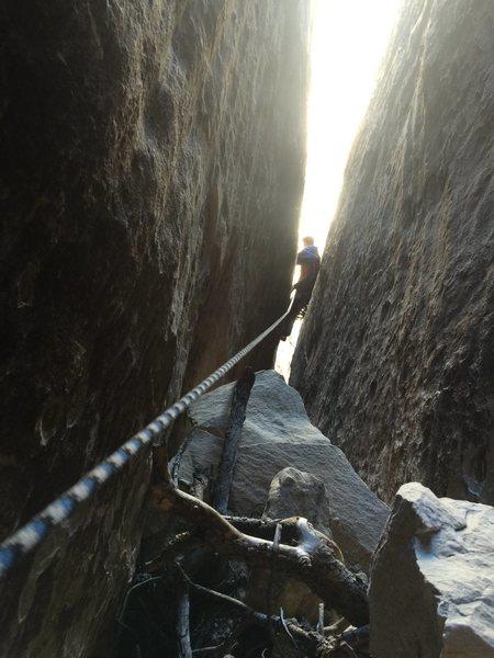 Rock Climbing Photo: Royal following P1