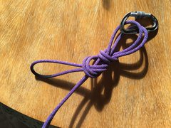 Tie a half-grapevine with the loop, going around the two strands of rope (presumably going to your followers).