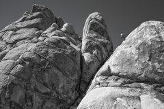Rock Climbing Photo: Mid Day Rappel - Joshua Tree