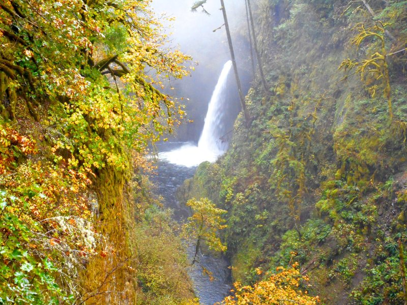 Metlako Falls on the Eagle Creek trail.