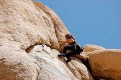 Rock Climbing Photo: Dandelion 5.10a joshua tree