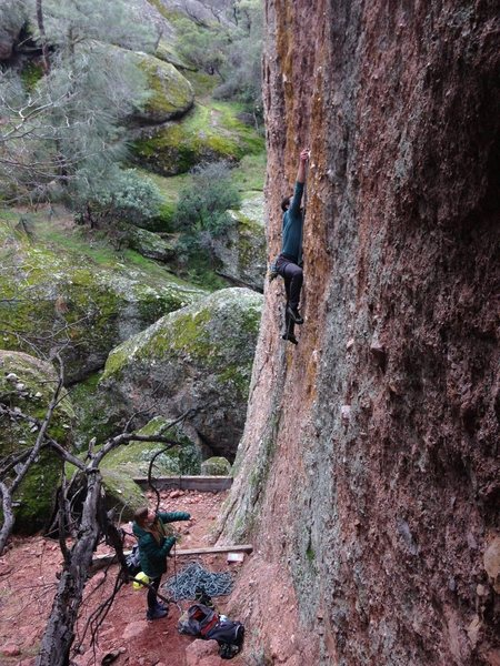 Nate clipping the 2nd bolt crux move on Auto Cream