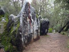 Rock Climbing Photo: Broken Face (V0)