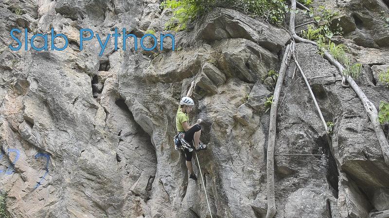 Rock Climbing Photo: Katie trying 'Slab Python'