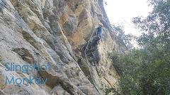 Rock Climbing Photo: FA of Slingshot Monkey