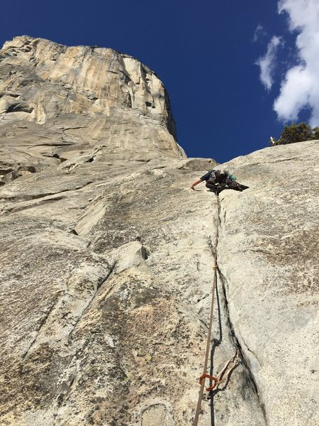 Leading Pine Line on El Cap Yosemite.