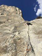 Rock Climbing Photo: Leading Pine Line on El Cap Yosemite.