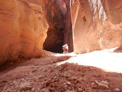 Rock Climbing Photo: More adventures form Buckskin Gulch