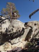 Rock Climbing Photo: A clean crack.