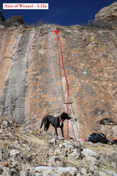 Rock Climbing Photo: Axis of Weasel (February 2016)