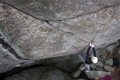 Rock Climbing Photo: Spencer working The Donald 5.11D at Old Rag