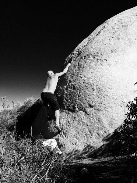 Rock Climbing Photo: Pops on the classic slab!!