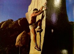 Rock Climbing Photo: This guy is still around!!