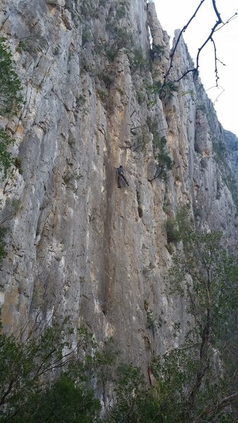 Rock Climbing Photo: Good long view of Cooters on Scooters 10d on Wonde...