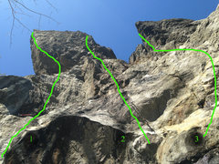 Rock Climbing Photo: View up from the Predator belay ledge. 1. Predator...