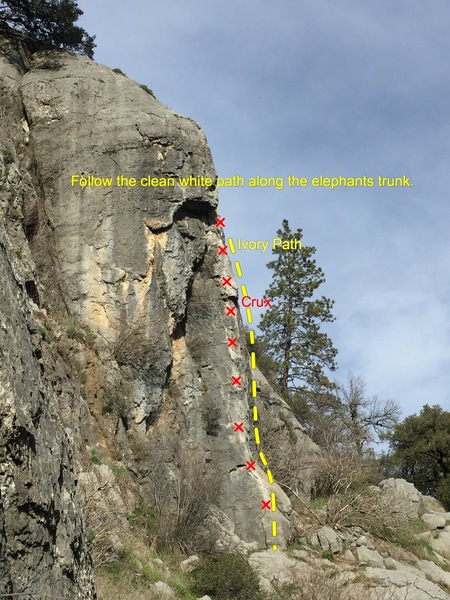 Rock Climbing Photo: Profile of the Pachyderm Buttress