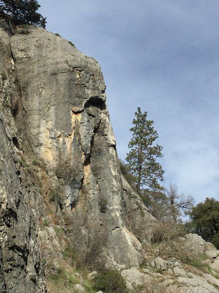 Rock Climbing Photo: Pachyderm Buttress
