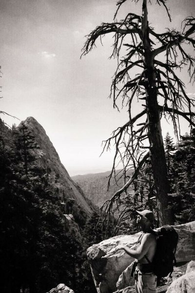 Rock Climbing Photo: B&W San Jack back country!!!