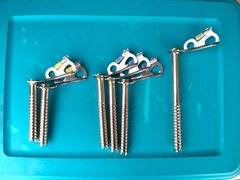 Rock Climbing Photo: screws available