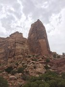 Rock Climbing Photo: Petrified Wood Tower  East Side