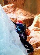 Rock Climbing Photo: Avocado Gully.