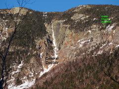 Rock Climbing Photo: Central & Green's