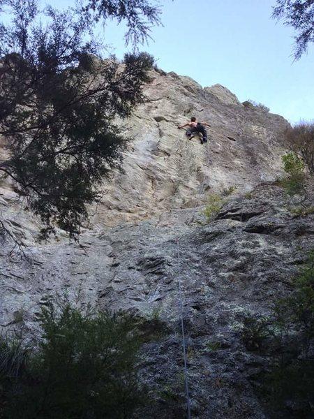 Rock Climbing Photo: Max Thomas working the crux
