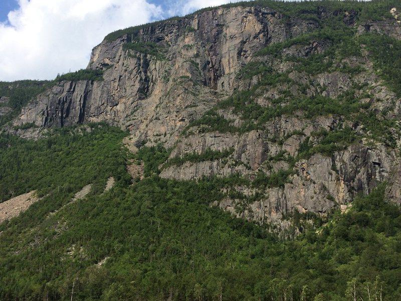 Rock Climbing Photo: Clean shot 2015
