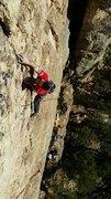 Rock Climbing Photo: Nate onsighting.