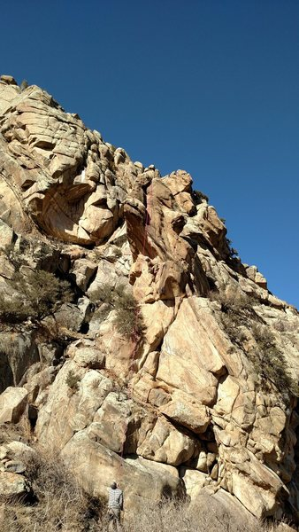 Pinnacle Toprope, South face at Neat Rock.