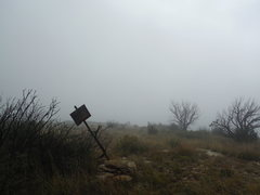 Foggy morning at the trailhead.