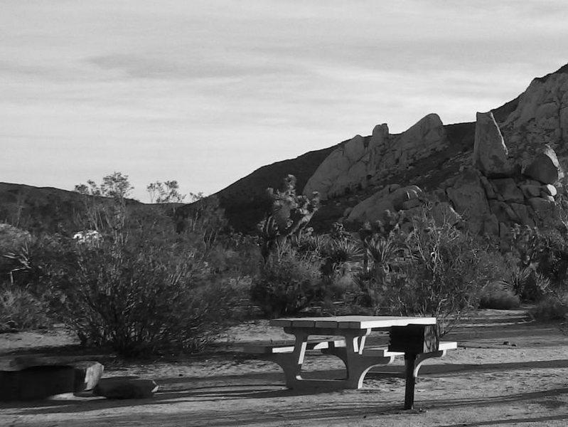 Rock Climbing Photo: Camping and climbing at JTNP.