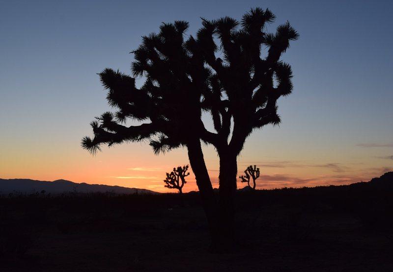 Sunset over AV crags 8)