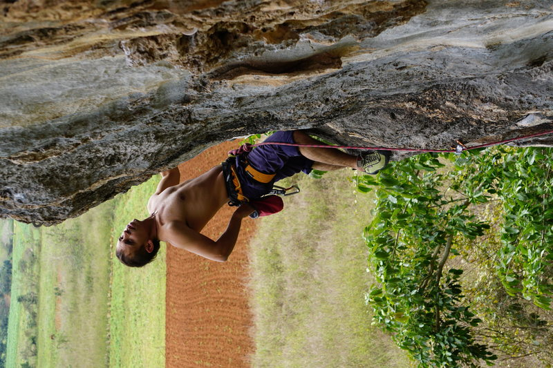 Rock Climbing Photo: Jorge chalking up on a 5-12 with tobacco fields in...